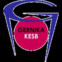 Lointek Gernika Bizkaia
