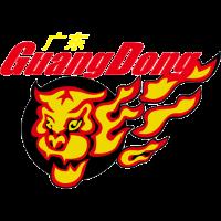 Guangdong Southern Tigers