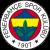 Fenerbahce Safiport logo